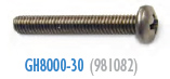 GH8000-30 Pan Screw 981082 AD-31